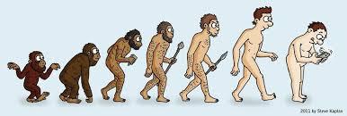 Evolution Of Man Chart Image Result For Man Evolution Chart Evolution Puzzle Man