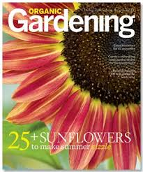 Small Picture Best 25 Free magazine subscriptions ideas on Pinterest Free