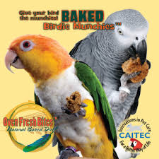 Parrot Diet Chart Parrot Diet And Nutrition Planned Parrothood