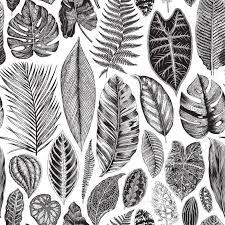 22 Botanical Illustrations Free Premium Templates