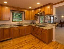 kitchen ambient lighting. general ambient lighting only kitchen