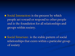 Pattern Of Interaction Inspiration Society Social Structure Social Interaction Ppt Video Online