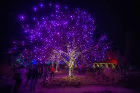 Downtown Denver Lights Denver Holiday Lights Visit Denver