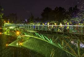 spectacular lighting. in addition to the bubble light spectacular this yearu0027s nighttime zoo offers a lot see and dou2014featuring africanthemed entertainment toetapping live lighting o