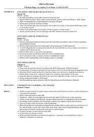 Server Resume Examples