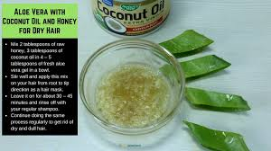 mask 3 aloe vera with coconut oil and honey for dry hair