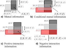 Mutual Information Venn Diagram Venn Diagrams Of Conditional Mutual Information And Interaction