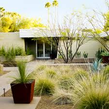 Small Picture Desert Landscaping Ideas from a Phoenix Front Yard Sunset