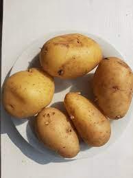 Etiqueta #aardappel en Twitter