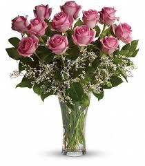 pink roses in vase flowers88