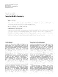 ganglioside biochemistry pdf available