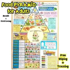 Details About 1pcs Food Pyramid For Adults Benefit And Gastonomy Poster Sketch Chart
