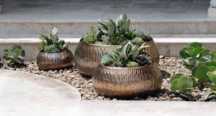 Small Picture Beach Garden Design Pamela Crawford Landscape Designer Amp Author