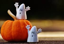 Image result for Photograph of Halloween
