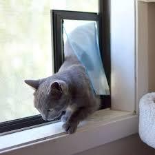 exterior cat doors horizontal window cat door dog door panel exterior door with dog door cat exterior cat doors