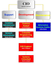 Beauty Salon Example 1 3 Organization Chart For Cis Department