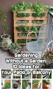 Small Picture Gardening Without a Garden 10 Ideas for Your Patio or Balcony