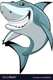 funny white shark vector image
