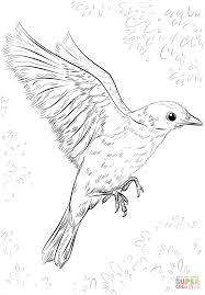 Small Picture Blue Bird Flying coloring page Free Printable Coloring Pages