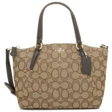 Coach Mini Kelsey Satchel In Outline Signature Brown