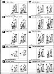 Multi Station Home Gym Exercise Chart Home Multi Gym Workout Plan Krigsoperan