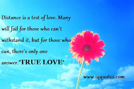 Bible Quotes Of Love Fascinating Bible Quotes About Love Love Bible Quotes Impressive Love Bible