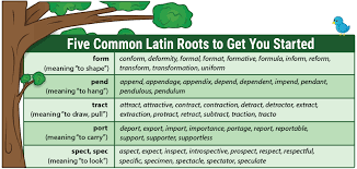 Latin Roots Chart Teach Latin Roots With Word Trees Free Download And Video
