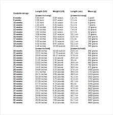 Average Baby Weight Uk Chart 10 Free Ms Word Baby Weight Chart Template Download Free