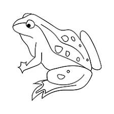 Open any of the printable files above by clicking the image or the link below the image. Top 10 Free Printable Jungle Animals Coloring Pages Online