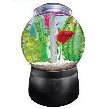 office desk aquarium. Office Desk Fish Tank. Full Size Of Tank Round Imagitarium Gumball Freshwater Aquarium Petco