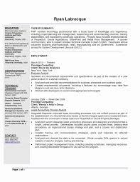 19 Best Of Business Analyst Resume Summary Bizmancan Com