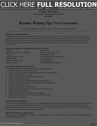 Resume For Stay At Home Mom Resume Work Template