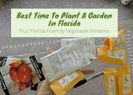 best time to start a garden in florida