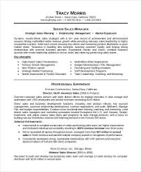 Resume Template Download Classy 28 Download Resume Templates PDF DOC Free Premium Templates