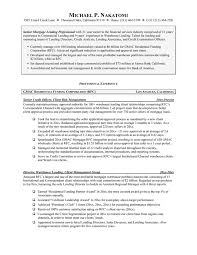 Mortgage Loan Officer Assistant Resume Mortgage Loan Officer Resume