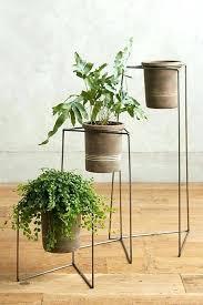 indoor plant rack plant pot stand indoor plant stands indoor plus plant pot and stand plus indoor plant