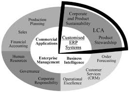 Systems Special Issue Enterprise Resource Planning Systems