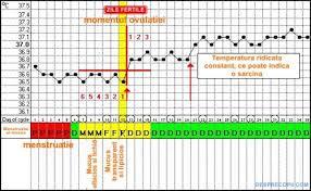 Calendar ovulatie data nasterii