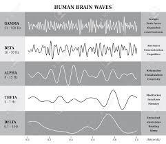 Human Brain Waves Diagram Chart Illustration In English