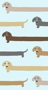 Dapper Dachshund Designs Freebie Dachshunds And Corgis Wallpaper Dog Wallpaper