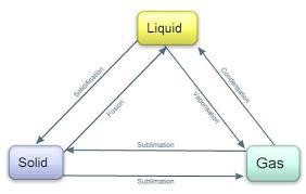 Assessment Grade 4 Students Will Create A Flow Chart