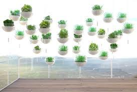 Kitchen Garden In Balcony Gardening Tips For Beginners Easy Ways Of Gardening Advanced