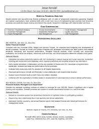 Credit Analyst Resume Financial Analyst Resume Sample Awesome 21 Financial Analyst Sample