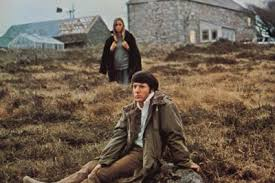 Image result for straw dogs