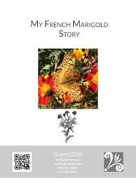 Small Picture My French Marigold Story Seed Saving Lesson Mini Books Coloring She