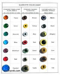 Cat Color Chart Cat Urine Color Chart Bedowntowndaytona Com