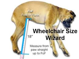 determine the size and cost of your wheelchair