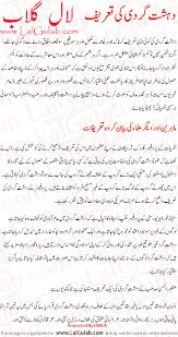 essay on dehshat gardi in urdu ga essay on dehshat gardi in urdu