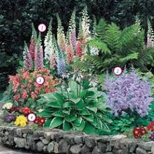 Small Picture Perennials Made Easy How To Create Amazing Gardens Perfect