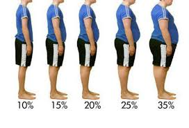 Men S Body Fat Chart Download Example Female And Body Fat Percentage Levels Chart